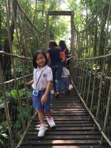 走在独木桥